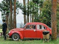 Jual Volkswagen Beetle  kualitas bagus