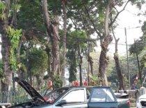 Jual Timor DOHC kualitas bagus