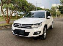 Jual Volkswagen Tiguan 2014 kualitas bagus